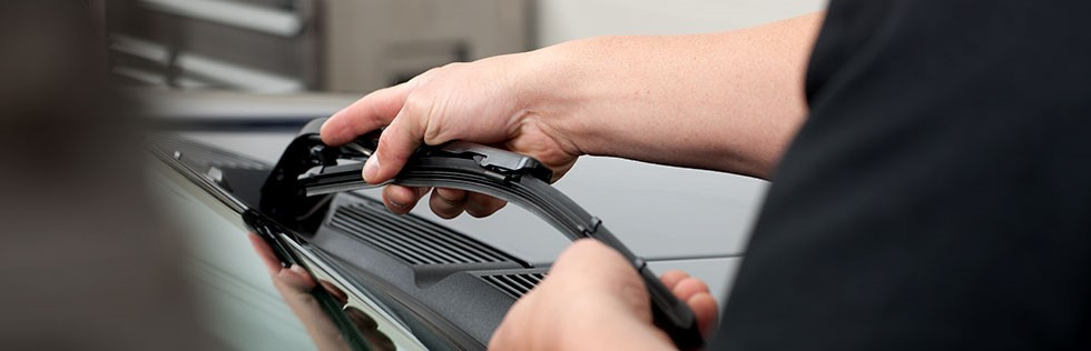 Tips for Getting Your Toyota Ready for Fall - Limbaugh